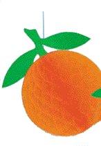 Hangdecoratie Sinaasappel