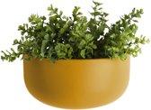 PT - Oval Wand Plantenpot L
