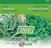 Duo van Somers zaden - Rucola Selvatica + Rucola Cultivata