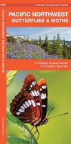 Pacific Northwest Butterflies & Moths