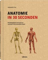 Anatomie in 30 seconden