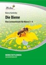 Die Biene. Grundschule, Sachunterricht, Klasse 3-4