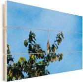 Purperreiger hoog in een boom Vurenhout met planken 120x80 cm - Foto print op Hout (Wanddecoratie)