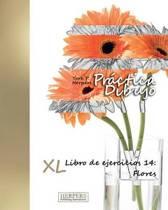 Pr ctica Dibujo - XL Libro de ejercicios 14