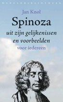 Spinoza uit zijn gelijkenissen en voorbeelden
