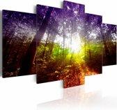 Canvas Schilderij Regenboog Bos, paars/groen, 5luik, 2 maten