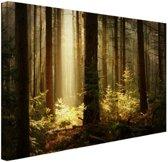 FotoCadeau.nl - Bos met zonnestralen Canvas 60x40 cm - Foto print op Canvas schilderij (Wanddecoratie)