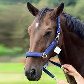 Halster EQU-ALL Nylon; Pony; Navy