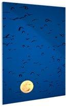Vleermuizen voor volle maan Glas 40x60 cm - Foto print op Glas (Plexiglas wanddecoratie)