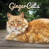 Ginger Cats Square Wall Calendar 2020