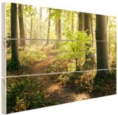 Pad in het bos  Hout 60x40 cm - Foto print op Hout (Wanddecoratie)