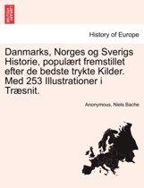 Danmarks, Norges Og Sverigs Historie, Populaert Fremstillet Efter de Bedste Trykte Kilder. Med 253 Illustrationer I Traesnit. Forfte del
