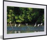 Foto in lijst - Wilde vogels in het water bij het Nationaal park Alas Purwo in Oost-Java fotolijst zwart met witte passe-partout 60x40 cm - Poster in lijst (Wanddecoratie woonkamer / slaapkamer)