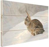Wild konijn in de sneeuw Hout 60x40 cm - Foto print op Hout (Wanddecoratie)