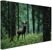 FotoCadeau.nl - Edelhert in het bos Canvas 60x40 cm - Foto print op Canvas schilderij (Wanddecoratie)