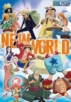 One Piece Poster New World Team