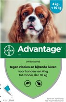 Advantage 100 Hond 4-10 kg - 4 Pipetten à 1,0 ml