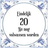 Verjaardag Tegeltje met Spreuk (20 jaar: Eindelijk 20! nu nog volwassen worden! + cadeau verpakking & plakhanger