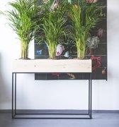 Fiorella plantenbak 120