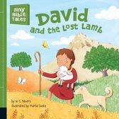 David and the Lost Lamb