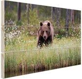 Bruine beer fotoafdruk Hout 120x80 cm - Foto print op Hout (Wanddecoratie)