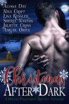 Christmas After Dark: A Holiday Paranormal Romance Anthology