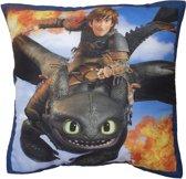 Dragons Toothless - Sierkussen - 40x40 cm - Multi