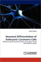 Neuronal Differentiation of Embryonic Carcinoma Cells