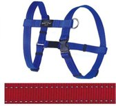 Rogz For Dogs Fanbelt Hondentuig - Rood - 20 mm x 45-75 cm