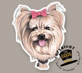 Magneet Hond Yorkshire Terrier