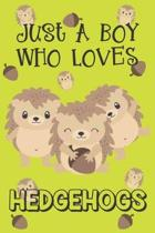 Just A Boy Who Loves Hedgehogs: Hedgehog Gifts: Novelty Gag Notebook Gift: Lined Paper Paperback Journal Book