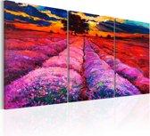 Schilderij - Land van kleuren, 3 luik