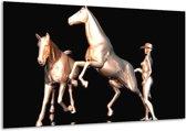 Glasschilderij Paard | Goud, Zwart, Zilver | 120x70cm 1Luik | Foto print op Glas |  F004009