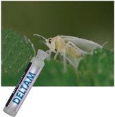 BioQuant, DELTAM 2,5ml , 1 doos a 10st.