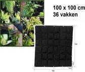 Verticale tuin met 36 grote vakken - 100cm x 100cm