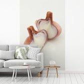 Fotobehang vinyl - Twee halve sjalotten afgebeeld tegen een witte achtergrond breedte 155 cm x hoogte 240 cm - Foto print op behang (in 7 formaten beschikbaar)