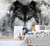 Fotobehang Forest Wolf In The Mist | VEM - 104cm x 70.5cm | 130gr/m2 Vlies