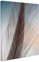 Veer close-up Canvas 80x120 cm - Foto print op Canvas schilderij (Wanddecoratie woonkamer / slaapkamer)