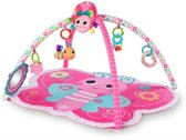 Bright Butterfly Activity Gym