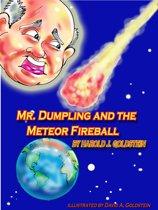 Mr. Dumpling and the Meteor Fireball
