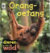 Dieren in het wild - Orang-oetans
