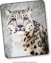 Elegante Plaid Snow Leopard 130x160 - Prachtige Design - Heerlijk Zacht