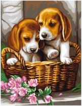 Schilderen Op Nummer Puppies in een Mandje