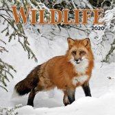 Kalender 2020 Wildlife (30.5 x 30.5)