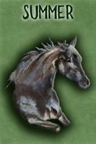 Watercolor Mustang Summer