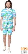 OppoSuits Flaminguy - Mannen Zomer Kostuum - Gekleurd - Feest - Maat 62