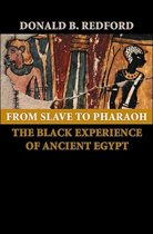 From Slave to Pharaoh