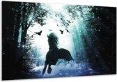 Glasschilderij Paard   Blauw, Zwart, Wit   120x70cm 1Luik   Foto print op Glas    F003120