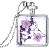 Fako Bijoux® - Ketting - Gedroogde Bloem - Vierkant - Zilverkleurig - Paars/Roze