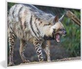 Foto in lijst - Een unieke gestreepte Hyena fotolijst wit 60x40 cm - Poster in lijst (Wanddecoratie woonkamer / slaapkamer)